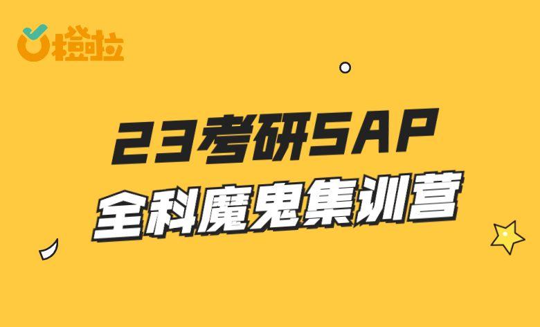 23考研SAP全科魔鬼集训营